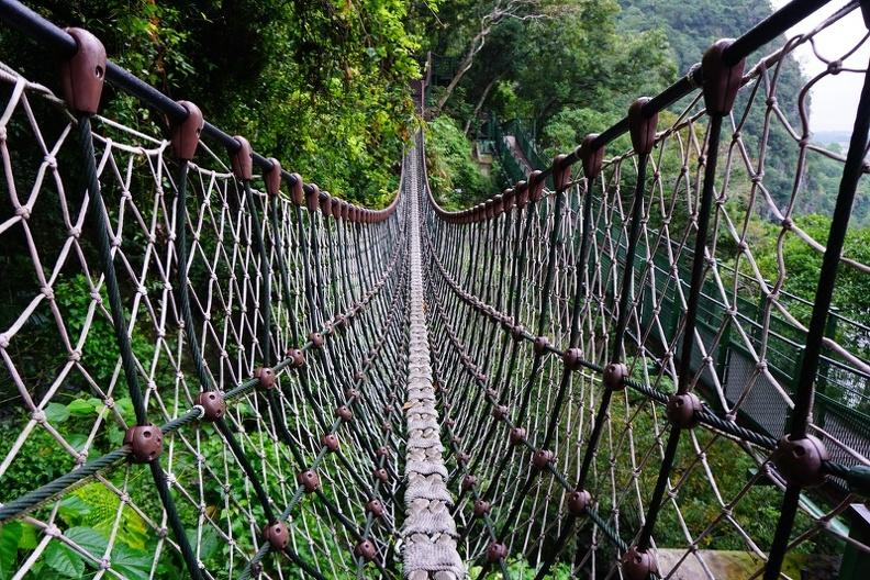 [花蓮太魯閣]小錐麓步道-輕鬆景觀型步道 全程30分鐘就可以沐浴在森林芬多精 太魯閣之美 家庭親子旅遊 可接砂卡噹步道全攻略