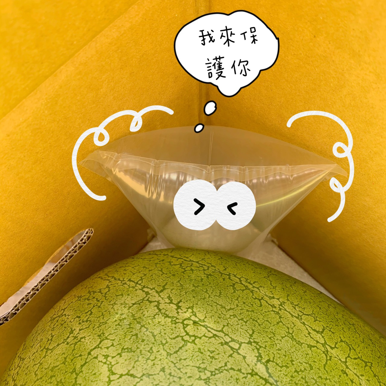 [花蓮西瓜推薦] 花蓮鳳林豪美好西瓜-  美味就在這時候!! 精選20%預訂宅配 包裝好看又安全  恐龍蛋西瓜