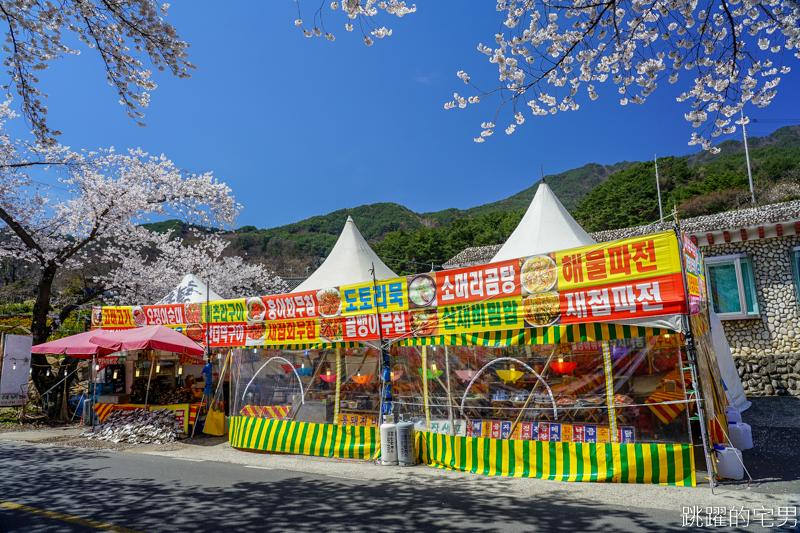 [韓國慶尚南道旅遊]河東十里櫻花路십리벚꽃길- 這不是標題黨 絕對認真櫻花樹海隧道 全長不只6公里  沒有你看到完 只有你看到累 此生必看韓國櫻花景點