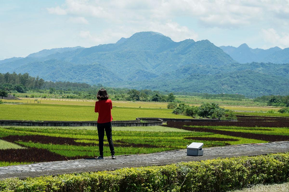 [花蓮景點]東里鐵馬驛站- 稻海不只是稻海 藝術在田上也能看到 優席夫彩繪稻田  193線道紅色鳳凰花 紅色阿勃勒 部落皇后咖啡廳 花蓮行程推薦