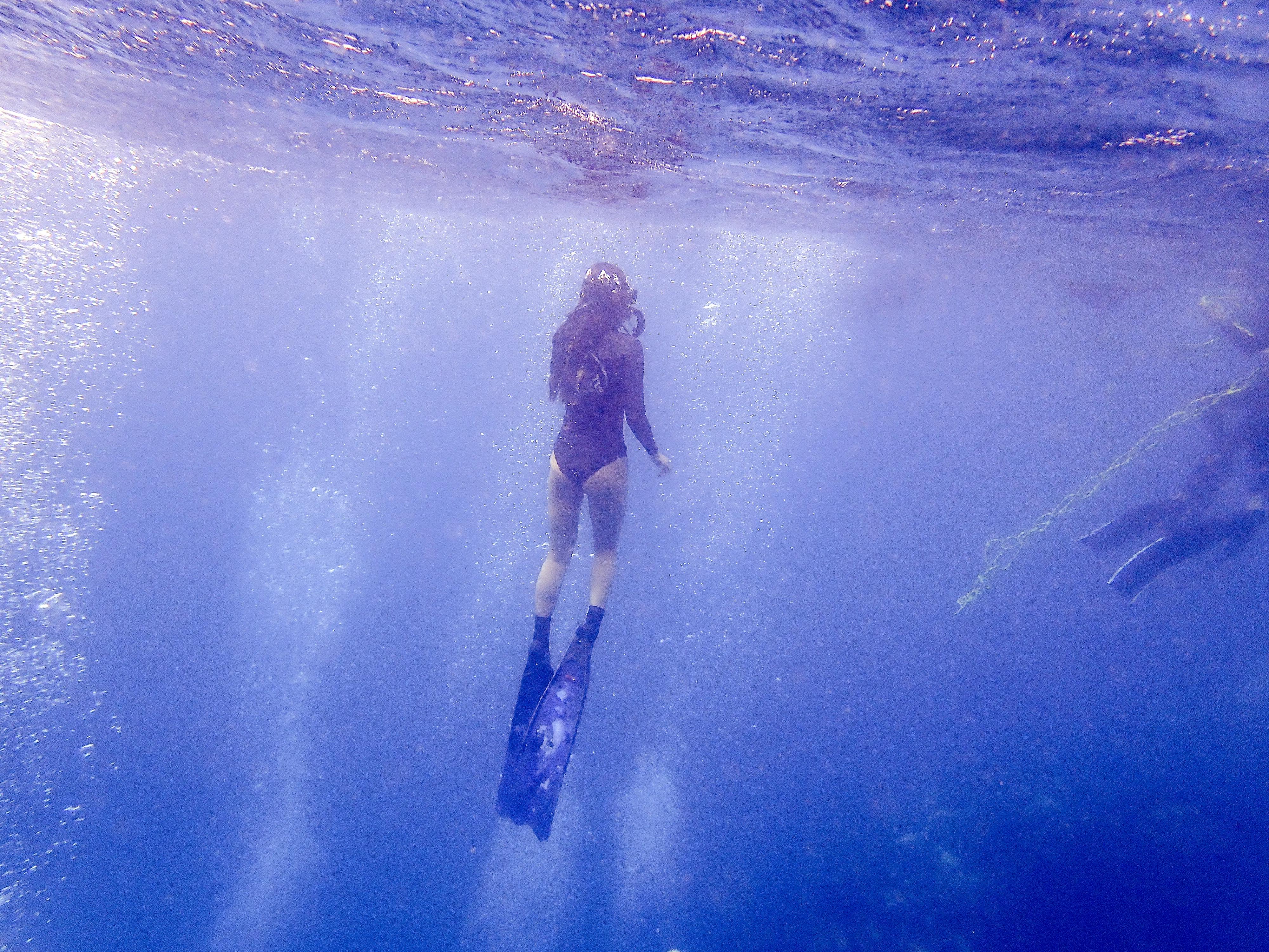 通往地球70%風景的門票 我在墾丁考到潛水證照! 初次潛水必須克服的三件事 放呆潛水俱樂部 PADI開放水域潛水員   潛水教學費用完整公開 乾淨又舒服的墾丁潛店推薦  墾丁住宿推薦