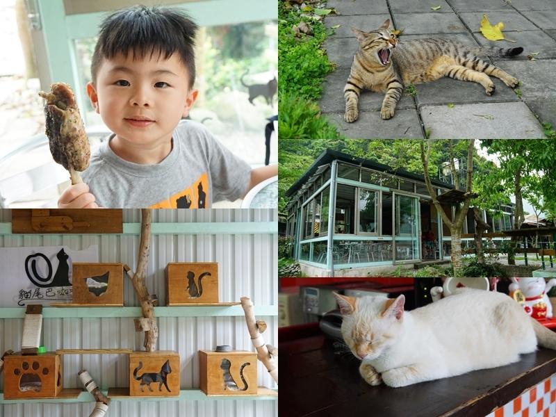 [花蓮銅門]貓尾巴咖啡-療癒可愛貓咪陪你吃飯 環境好舒服唷 @跳躍的宅男