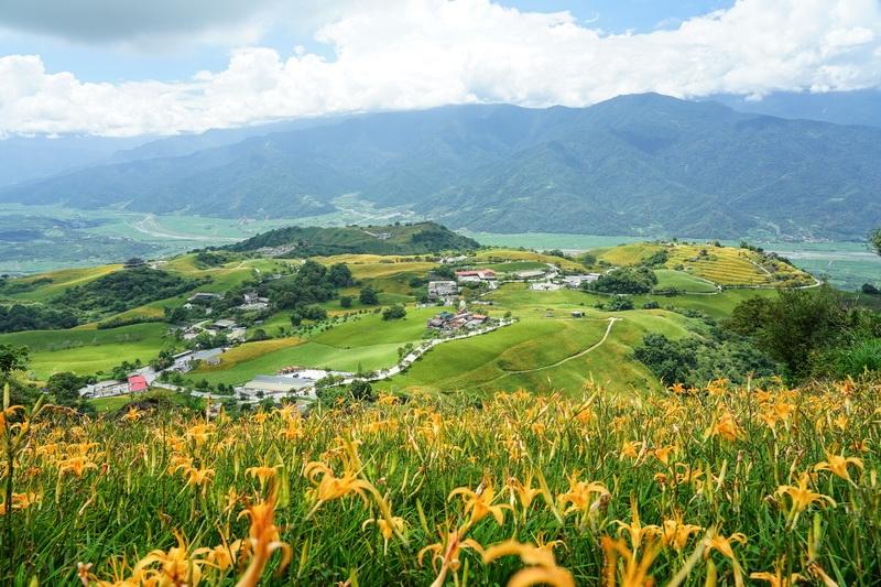 六十石山金針花 最容易把心留下的地方 此生必看台灣風景 @跳躍的宅男